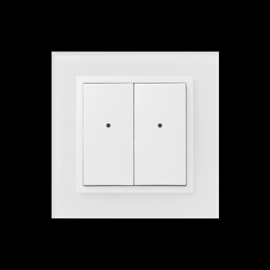 iNELS kontroler dwuprzyciskowy WSB-40